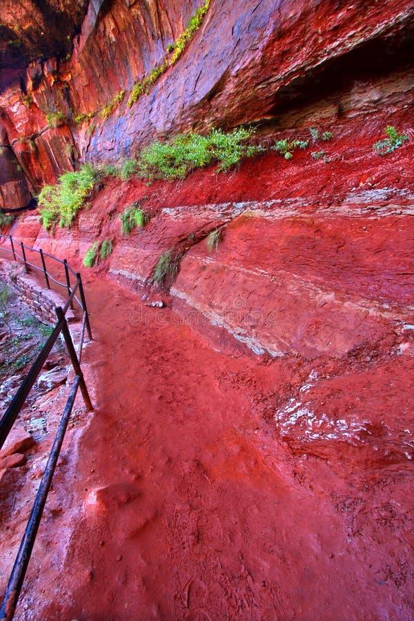 Smaragdpool-Spur in Utah lizenzfreies stockbild