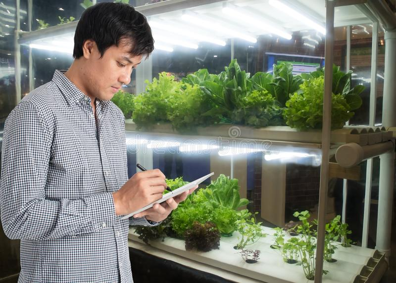 Smart agriculture in futuristic concept, farmer use technology t stock photos