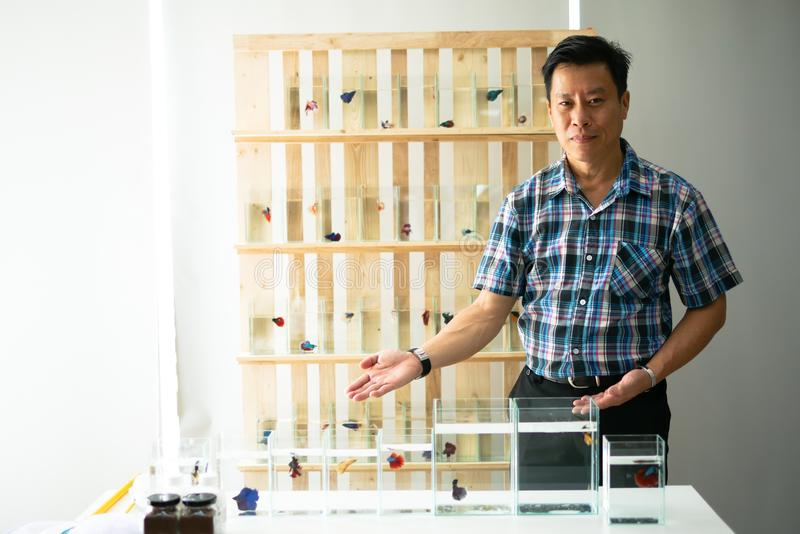 Smart asian men selling siamese fighting fish betta are welcom royalty free stock photography
