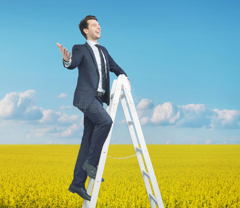 Smart Businessman Standing On The Ladder Stock Photo
