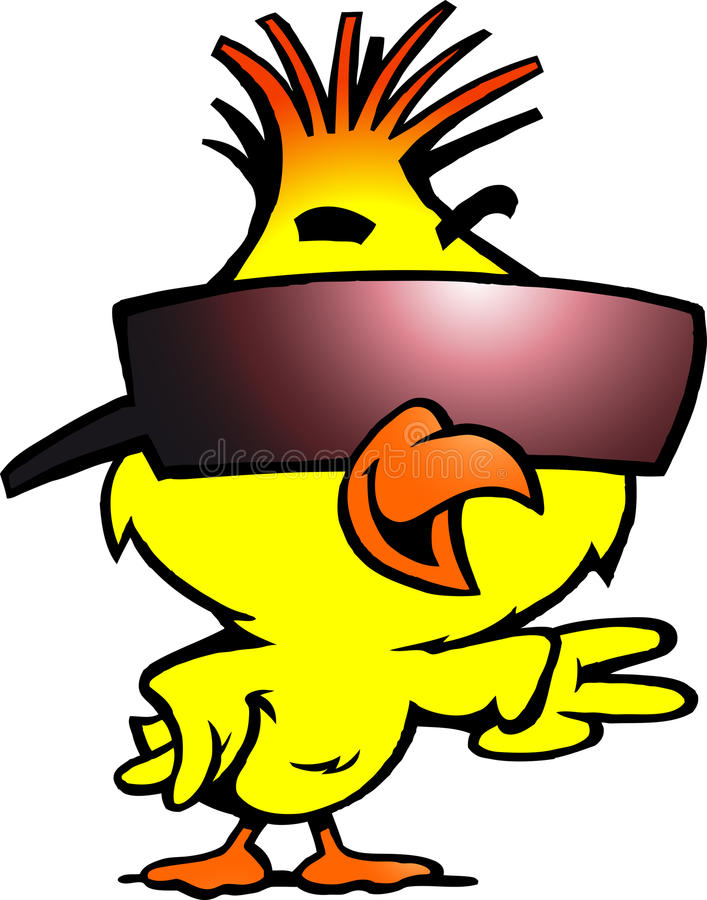 Smart chicken with cool sunglass