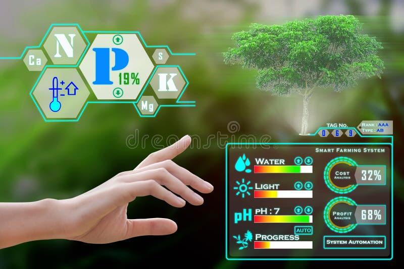 Smart, das mit Technologie bewirtschaftet lizenzfreie stockfotos