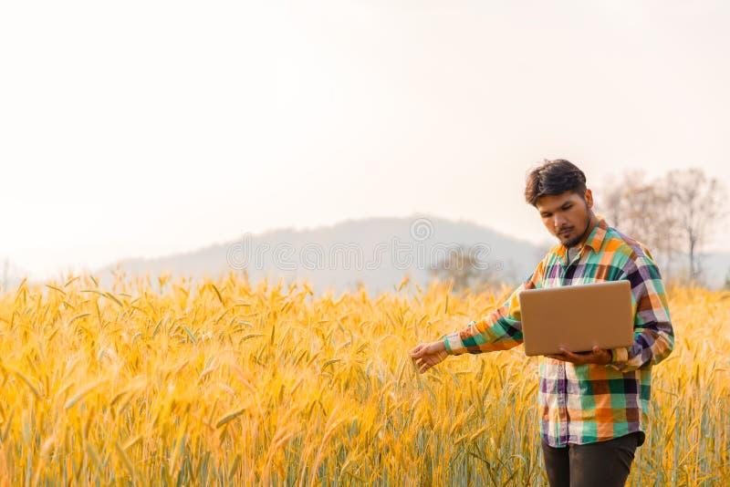 Smart die gebruikend moderne technologie?n in landbouw bewerken stock fotografie