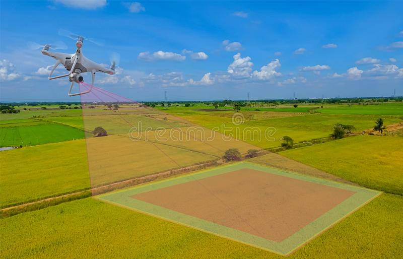 Smart farmer use drone for various fields. Drone for agriculture and use for various field. Drone copter flying with digital camer. A. Drone with high resolution stock photo