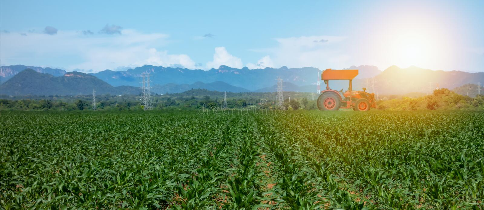 Smart farming with agriculture industry 4.0 concept, farmer use tractor in the farm for Plowing, Harrowing, Sowing Intercultivati royalty free stock image
