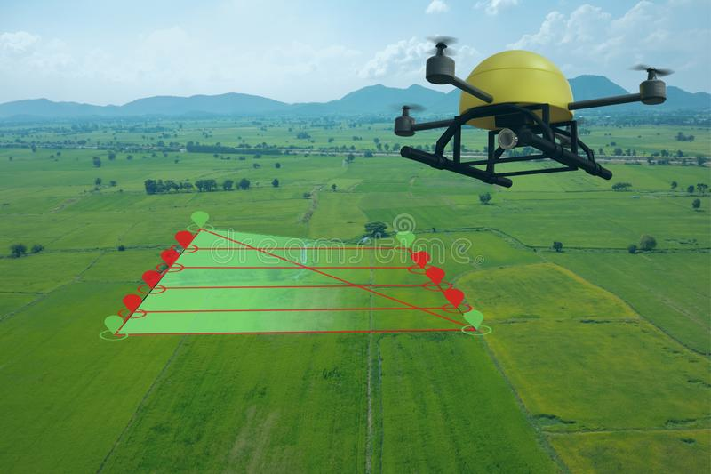 Smart farming concept, drone use a technology in agriculture with artificial intelligence to measure the area, photographer, and f. Ly follow the line and send royalty free stock images