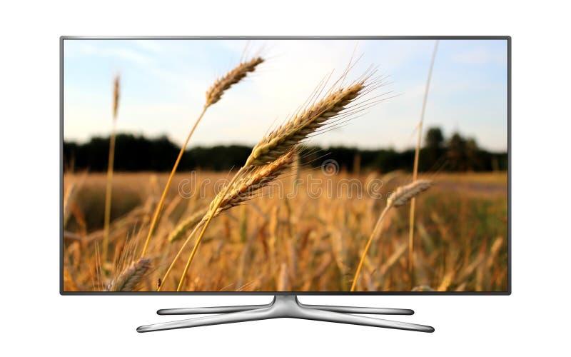 Smart-Fernsehen mit Weizenfeld auf Schirm stockbilder