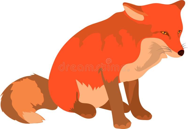 Smart gullig röd räv som kliver att gå och att se framåtriktat vektor illustrationer