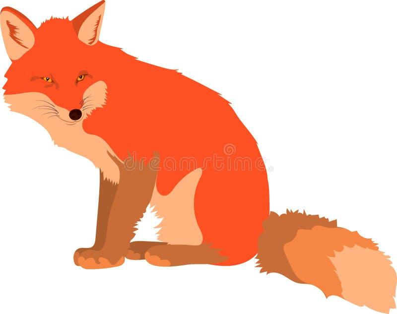 Smart gullig röd räv som kliver att gå och att se tillbaka vektor illustrationer
