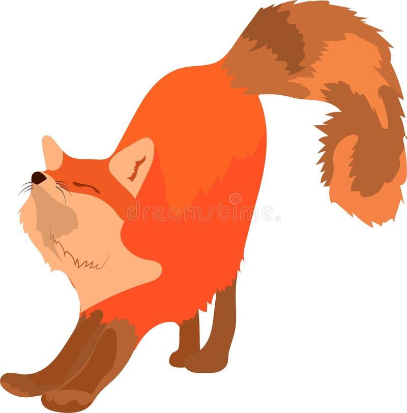 Smart gullig röd räv som sträcker med den stora fluffiga svansen royaltyfri illustrationer