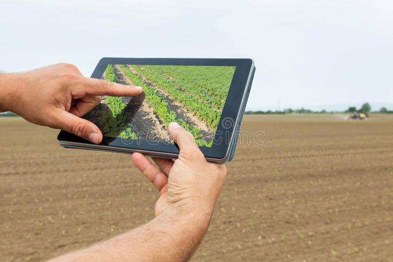 Smart jordbruk Bonde som använder att plantera för minnestavlasojabönor Moderna Agri royaltyfri fotografi