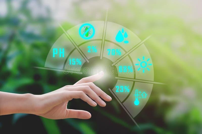 Smart lantbruk med teknologi AI royaltyfri foto