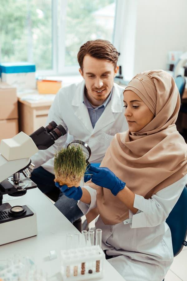 Smart muslim kvinna som arbetar i labbet royaltyfri fotografi