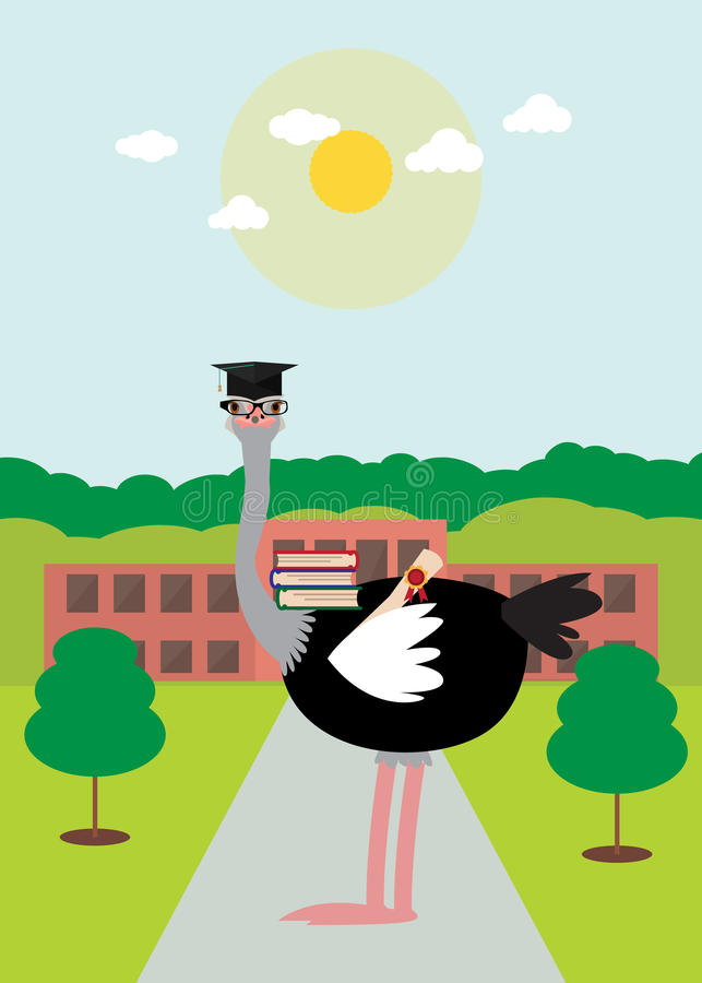Smart ostrich. Decided to get an education. He has a diploma and books. Contrary to what they say about the ostrich which is stupid bird stock illustration