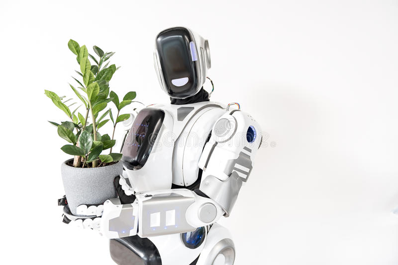 Smart robot is standing with flower pot royalty free stock photo