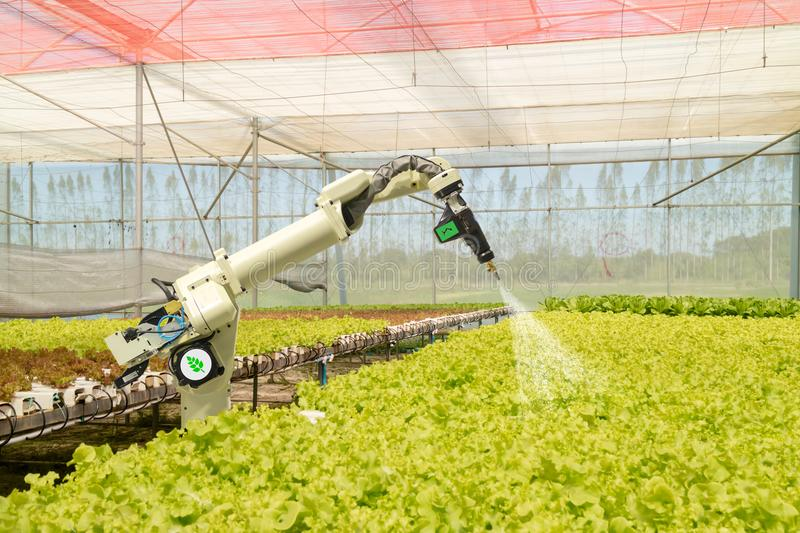 Smart robotic in agriculture futuristic concept, robot farmers automation must be programmed to work to spray chemical,fertilizer royalty free stock photography