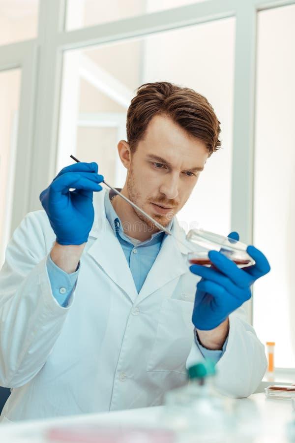 Smart skäggig forskare som arbetar på hans forskning royaltyfria foton