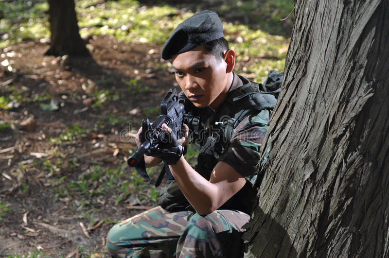 Download Smart Soldier Defending The Country Stock Image - Image: 10785603