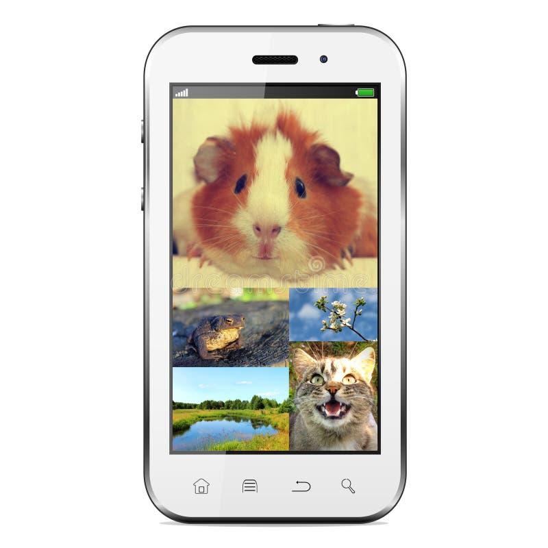 Smart-telefon fotografering för bildbyråer