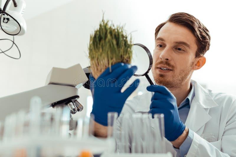 Smart ung man som studerar det gröna gräset royaltyfri foto