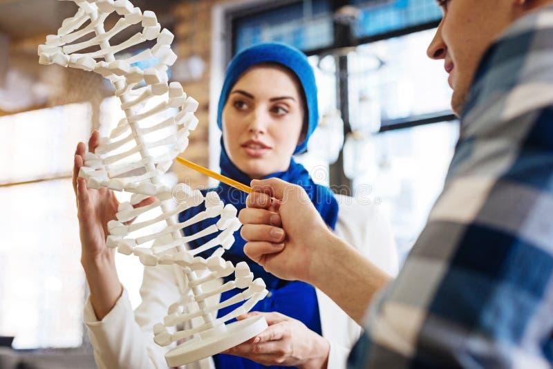 Smarta internationella studenter som lär genetik royaltyfri foto