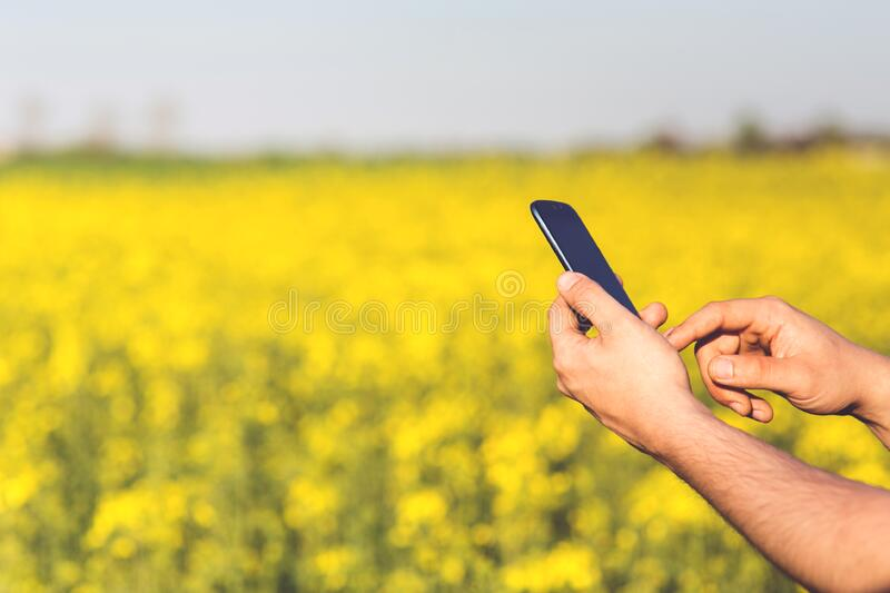 Smartphone Acer Jade S in the hands of a man on a background of yellow flowers stock photos