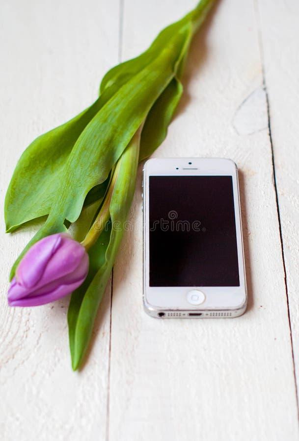 Smartphone bianco con il tulipano lilla su un fondo di legno leggero fotografia stock libera da diritti