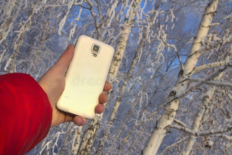 Smartphone bianco a disposizione con la riflessione di tramonto, contro lo sfondo di una foresta confusa di inverno fotografie stock libere da diritti