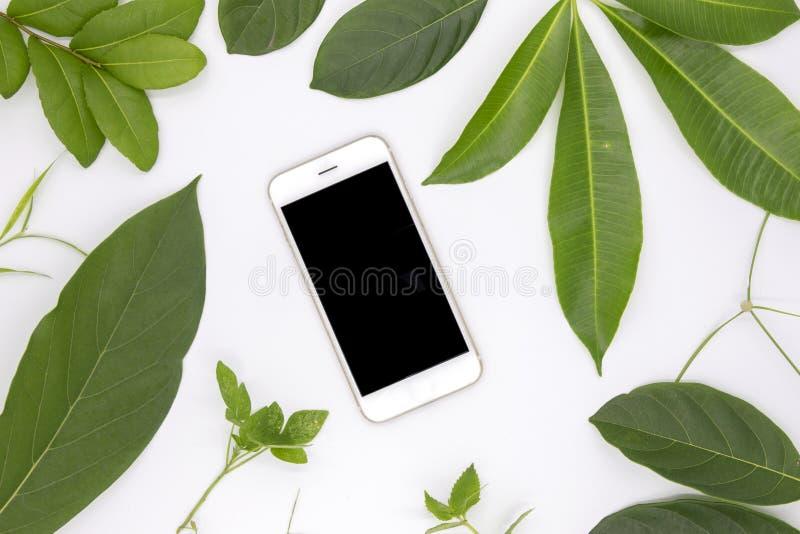 Smartphone noir d'écran et feuilles vertes d'été sur le fond blanc Interface utilisateurs de maquette du téléphone portable APP photographie stock libre de droits