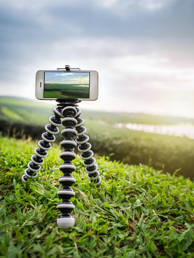 Smartphone take a landscape photo on tripod. Close-up image of smartphone take a landscape photo on flexible tripod at tea farm in northern of Thailand royalty free stock image