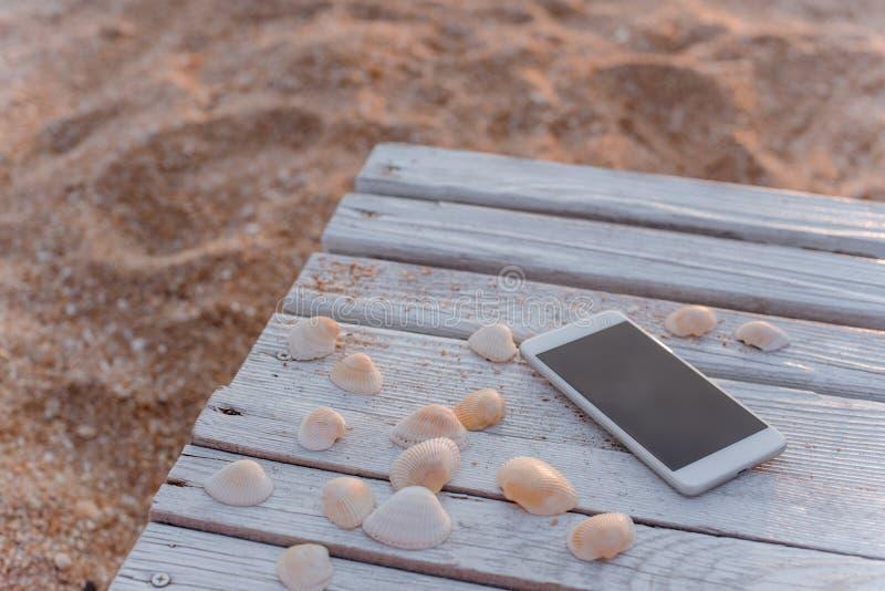 Smartphonen ligger i omringa av snäckskal på träbräden royaltyfria bilder