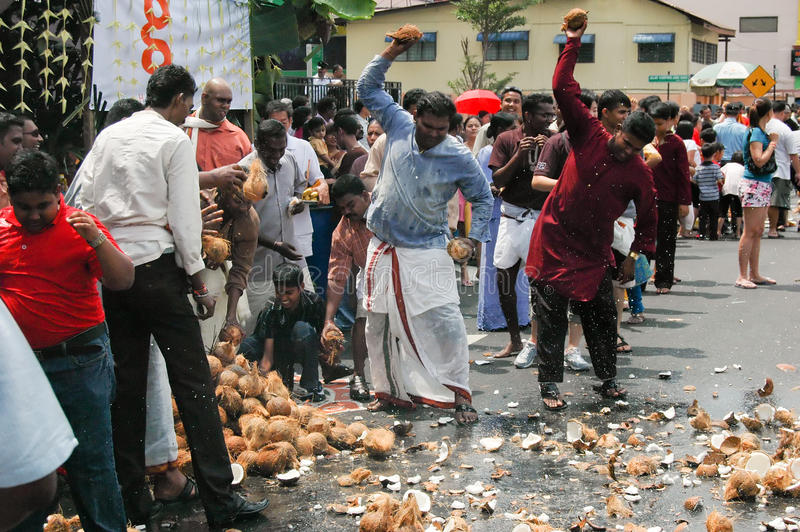 Download Smashing Coconuts In Thanksgiving Editorial Stock Image - Image: 14581474