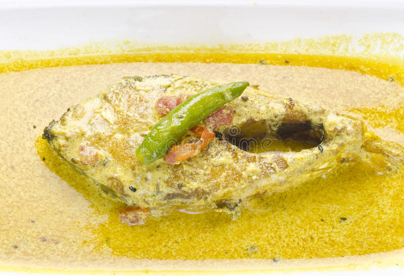 Smaskig Hilsha curry med styrt, mycket populärt i Indien och Bangladesh arkivfoto