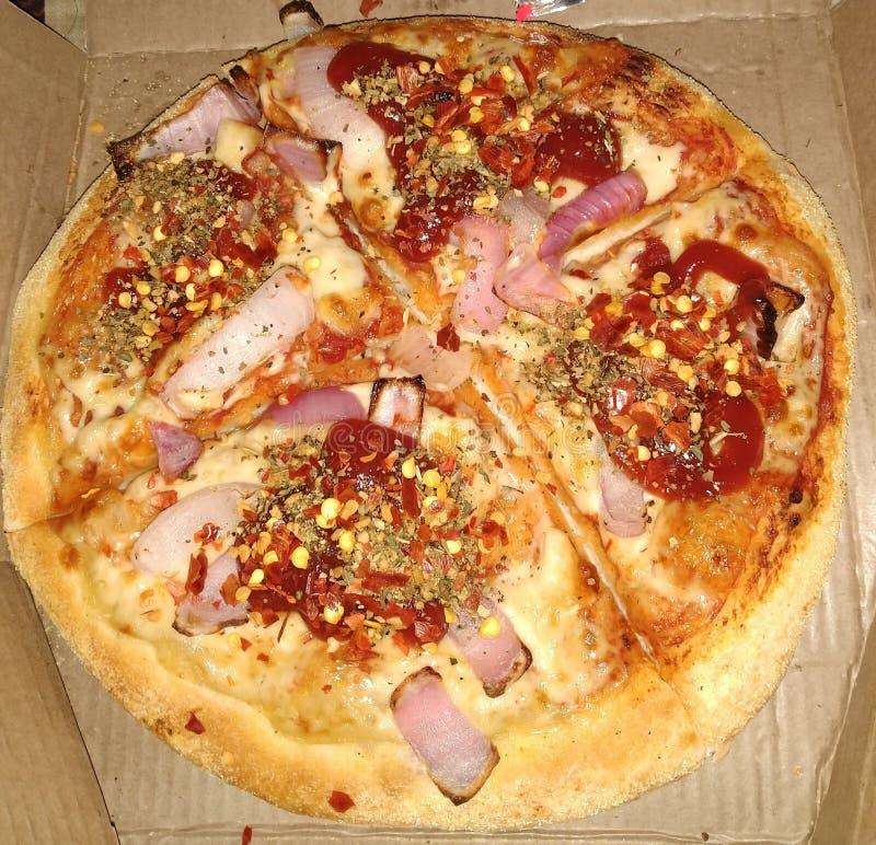 Smaskig och kryddig lökpizza fotografering för bildbyråer