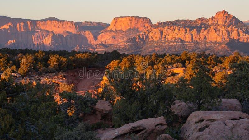 Smedens vindar för mesa-väg till och med enträd och slickrock med bergen av Zion National parkerar i bakgrunden på solnedgången arkivbild