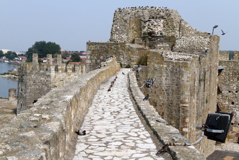 Smederevo的堡垒 免版税库存图片