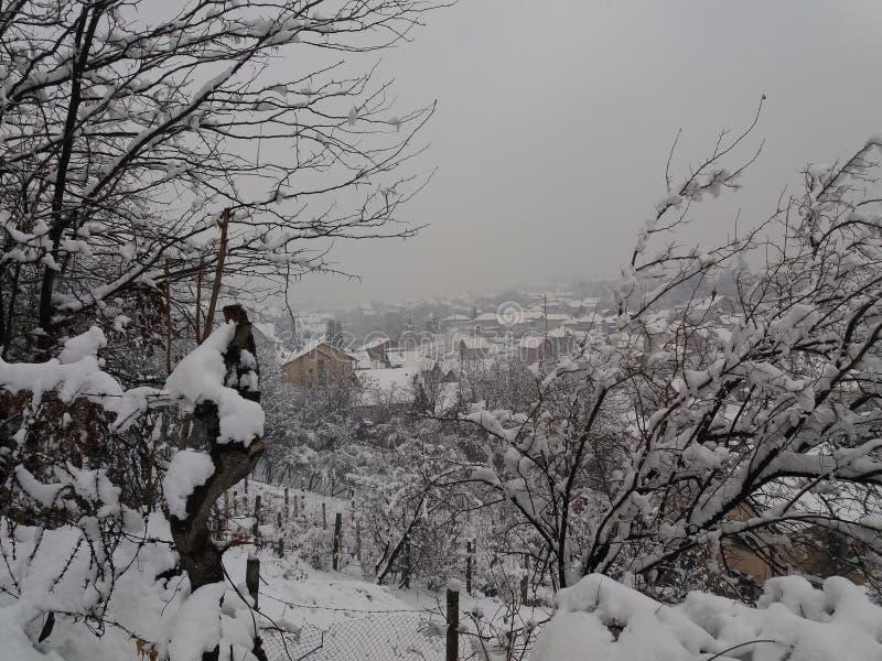 Smederevo - hiver images libres de droits