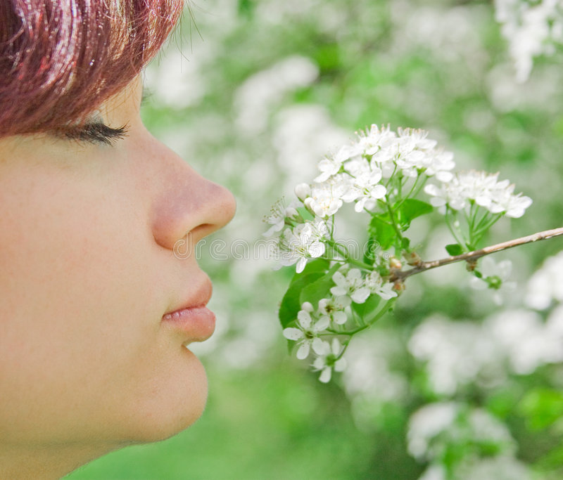 Smell the flower. Young pretty woman smelling flowers royalty free stock image