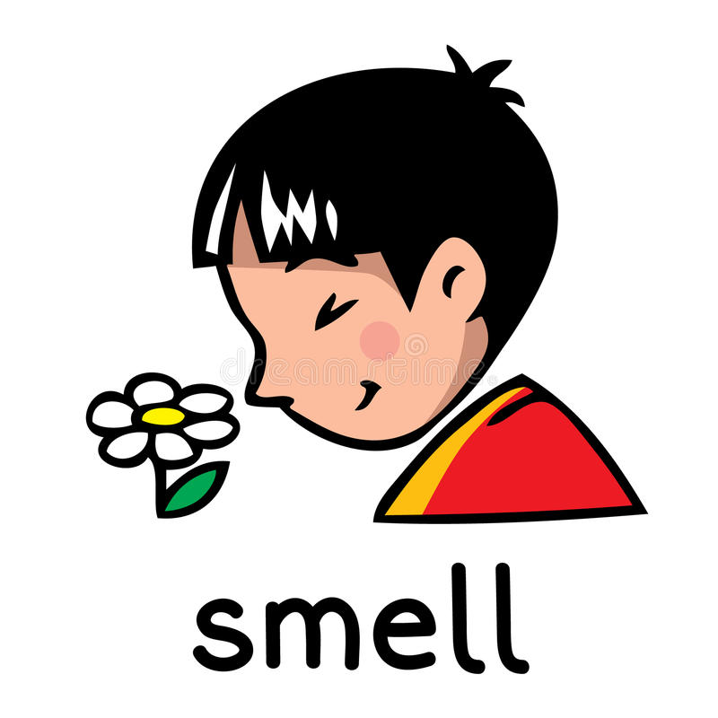 Smell Sense icon. Icons of one of five senses - smell. Children vector illustration of boy in red t-shirt who shut his eyes and sniff the flower royalty free illustration