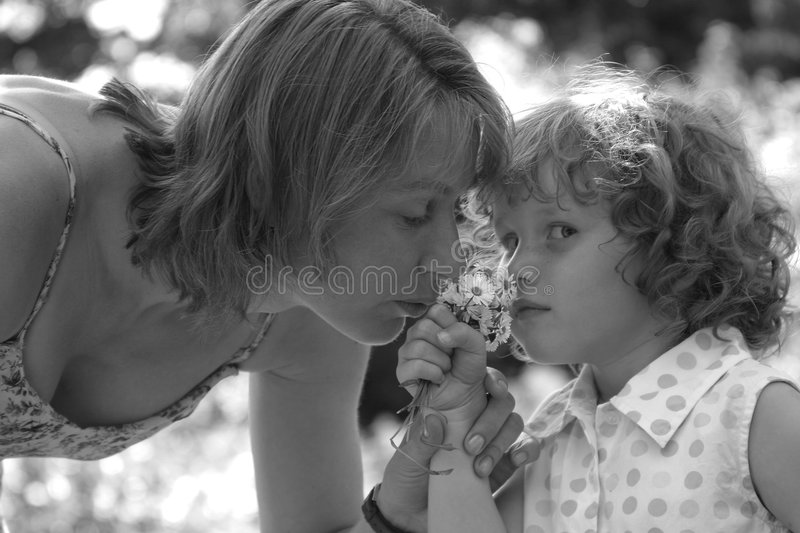 Smelling the daisies stock photography