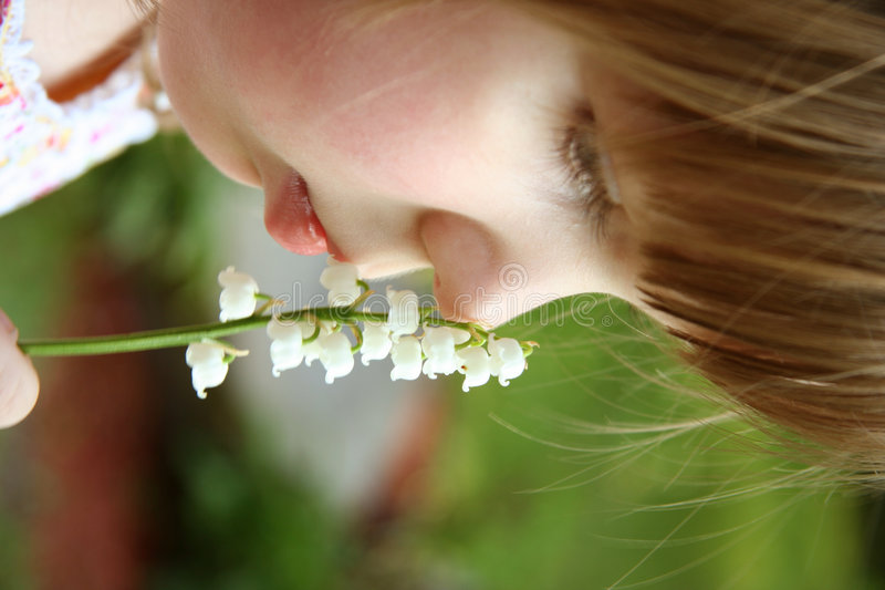 Smelling the flowers stock photos
