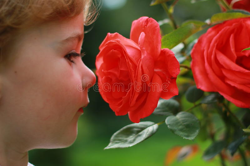 Download Smells nice stock image. Image of beauty, green, portrait - 21558231