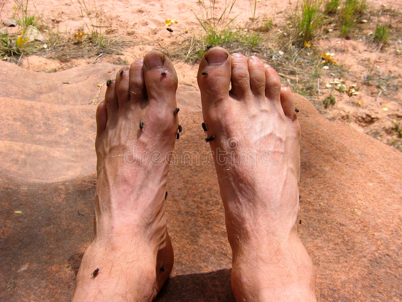 Smelly Füße lizenzfreie stockfotografie