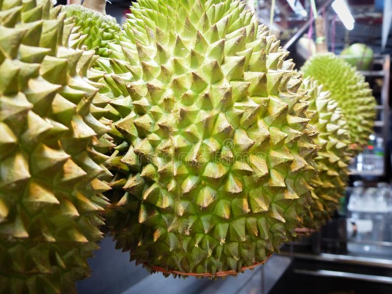 Durian fruit close up on a Malaysian market stall. Smelly Spikey Green Durian Fruit hanging on a street market stall to be sold. Photo taken on Jalan Alor Street royalty free stock photo