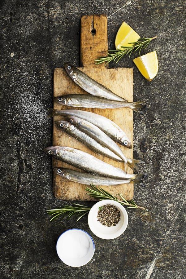 Smelt pequeno fresco dos peixes de mar, sardinha em um fundo simples com fatias de sal, de alecrins e de limão Vista superior O c imagens de stock royalty free