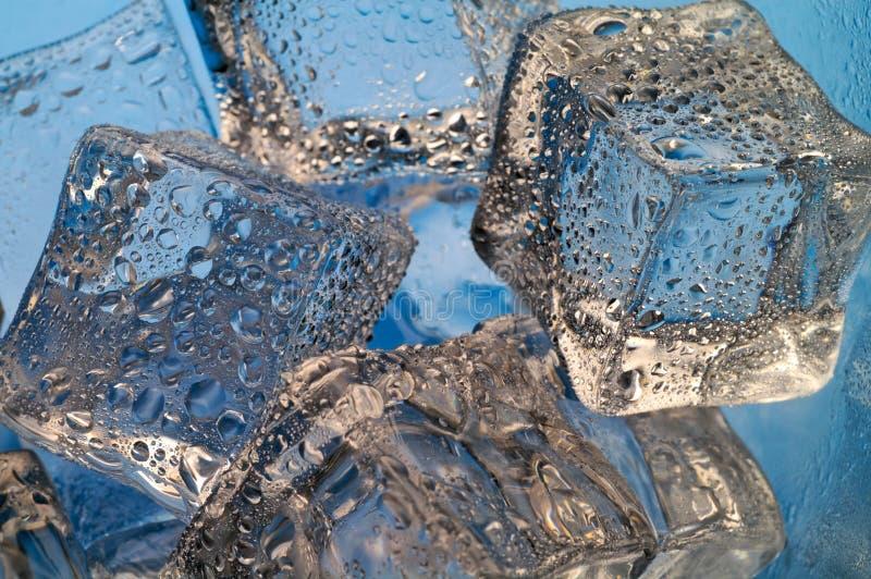 Smeltende ijsblokjesclose-up royalty-vrije stock foto's