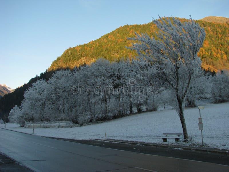 Smeltende Sneeuw in de Lente stock foto's