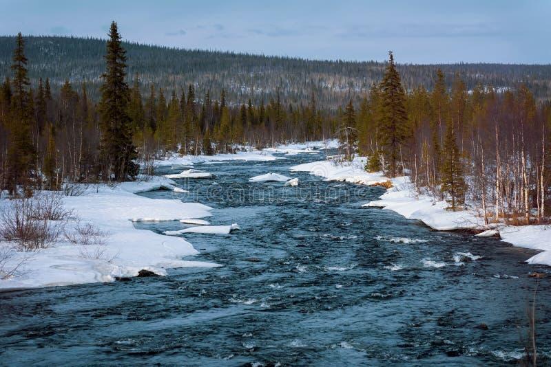 Smeltende sneeuw en stromende koude blauwe rivier in de sneeuw naast de bosaankomst van de lente royalty-vrije stock foto's