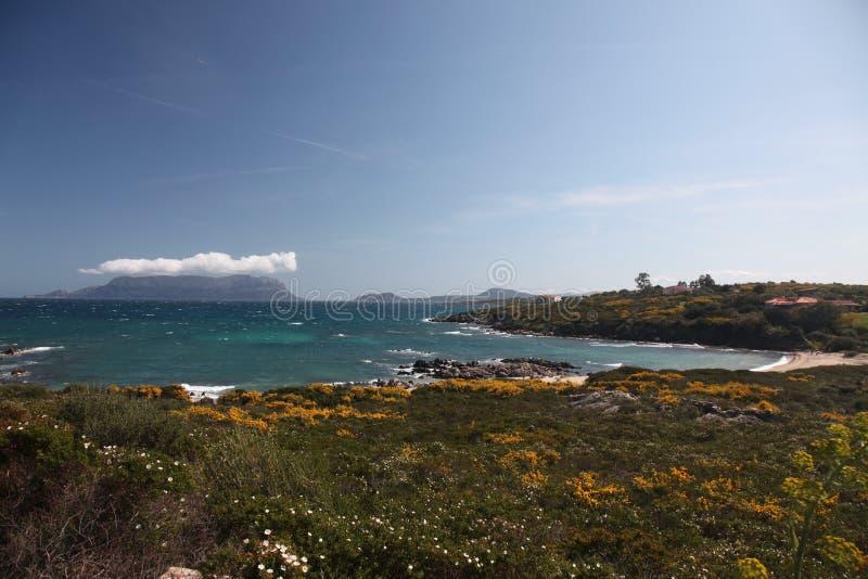 Smeralda Italy da costela de Sardegna fotografia de stock royalty free