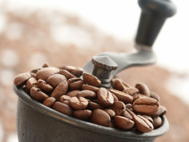 Smerigliatrice di caffè immagine stock
